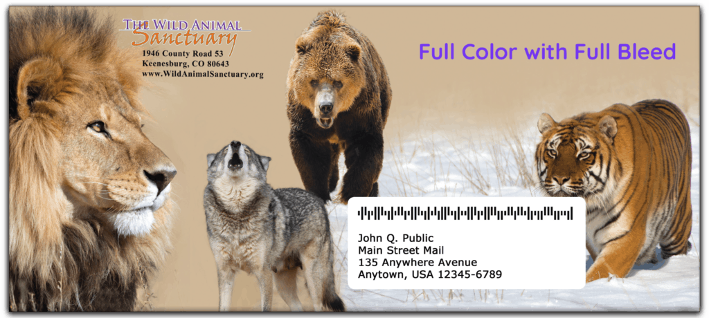 application finder 10 envelope full bleed color rena by quadient